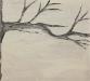 Tree Study Three
